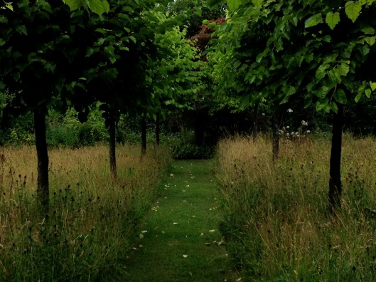 welsh_garden