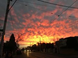 sunset melb 1